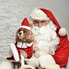 Fetch Santa13-8242