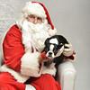 Fetch Santa13-8138