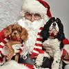 Fetch Santa13-8103
