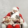 Fetch Santa13-8052