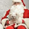 Fetch Santa13-8120