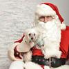 Fetch Santa13-8112