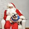 Fetch Santa13-8163