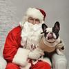 Fetch Santa13-8067