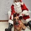 Fetch Santa13-7958