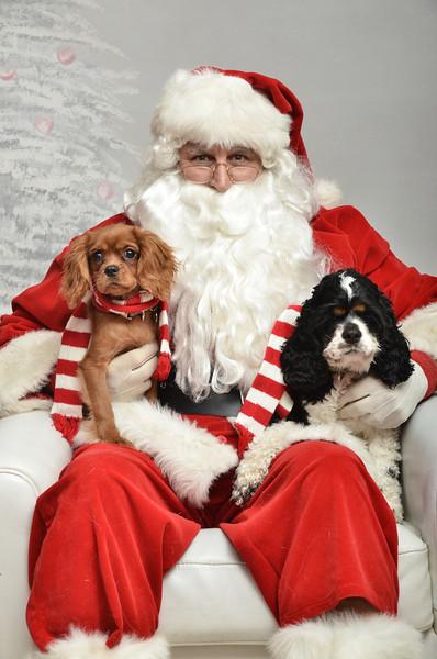 Fetch Santa13-8093