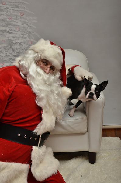 Fetch Santa13-8145