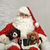Fetch Santa13-8236
