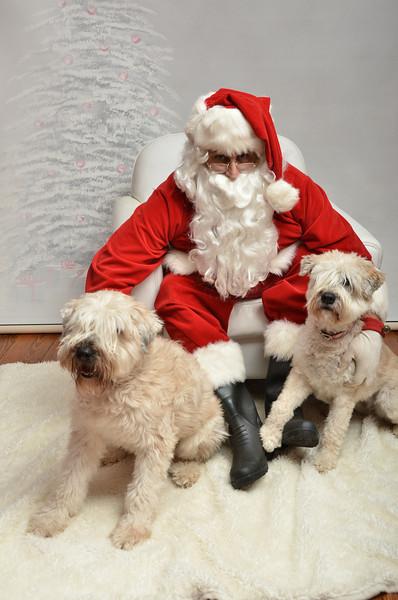 Fetch Santa13-7979