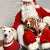 LR-Fetch Santa13-8267
