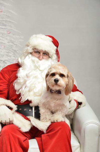 Fetch Santa13-8010