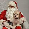 Fetch Santa13-8008