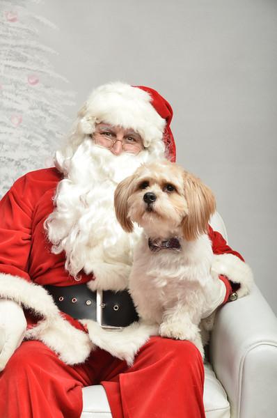 Fetch Santa13-8017