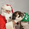 Fetch Santa13-8288