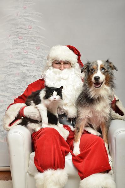 Fetch Santa13-8060