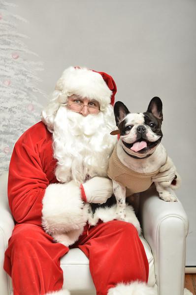 Fetch Santa13-8072