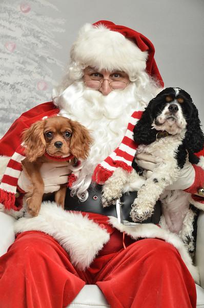 Fetch Santa13-8106