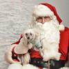 Fetch Santa13-8113