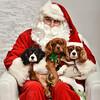 LR-Fetch Santa13-8228
