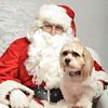 Fetch Santa13-8020