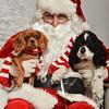 LR-Fetch Santa13-8108