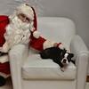 Fetch Santa13-8143