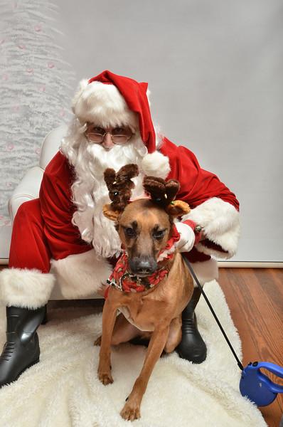 Fetch Santa13-7962