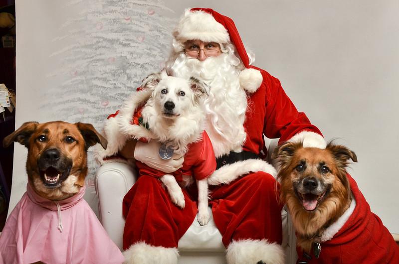 LR-Fetch Santa13-8282