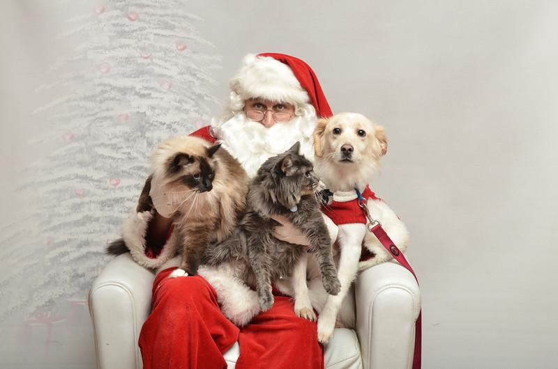 Fetch Santa13-8173