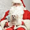Fetch Santa13-8117