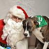 Fetch Santa13-8290