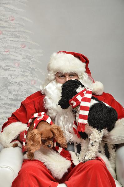 Fetch Santa13-8085