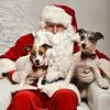 LR-Fetch Santa13-8036