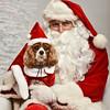 LR-Fetch Santa13-8239