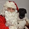 Fetch Santa13-8275