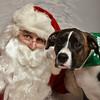 Fetch Santa13-8291