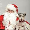Fetch Santa13-8033