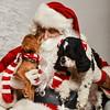 LR-Fetch Santa13-8101