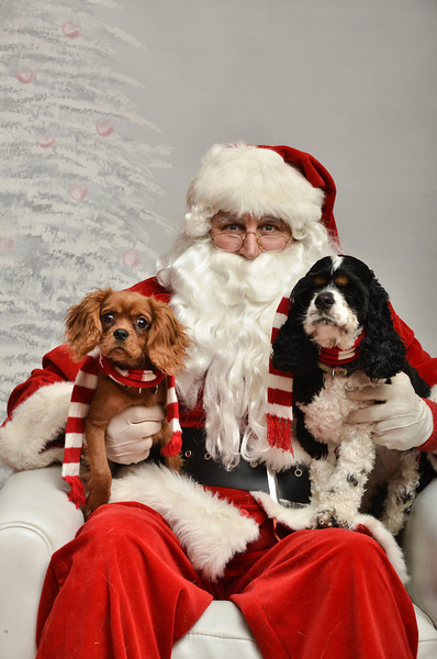 LR-Fetch Santa13-8089