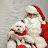 Fetch Santa13-8209