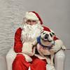 Fetch Santa13-8161