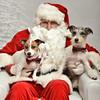 LR-Fetch Santa13-8039