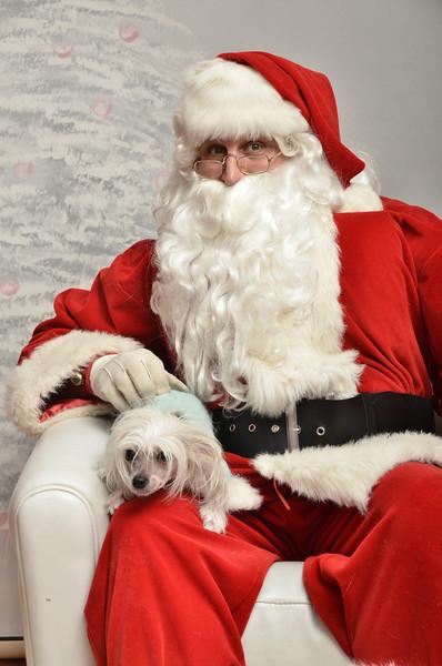 Fetch Santa13-8116