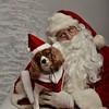 Fetch Santa13-8249