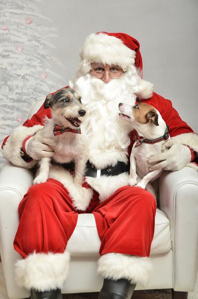 Fetch Santa13-8027