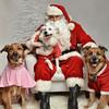 LR-Fetch Santa13-8278
