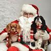 Fetch Santa13-8088