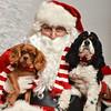 LR-Fetch Santa13-8104