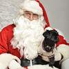 Fetch Santa13-8269