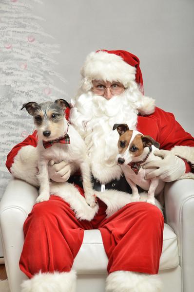 Fetch Santa13-8029